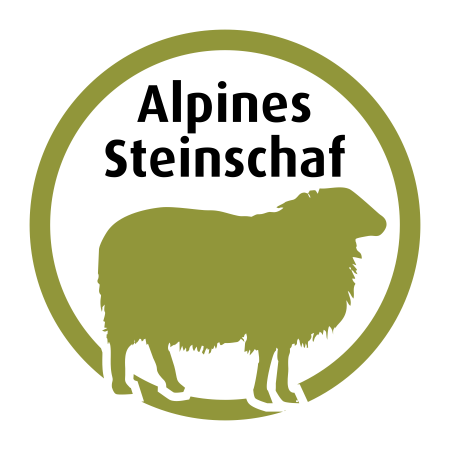 Alpines Steinschaf